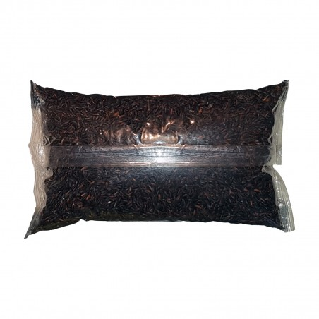 Rice for sushi, integral black - 1 kg Martinotti NCI-25181310 - www.domechan.com - Japanese Food