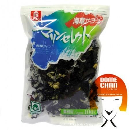 Kaisou salad seaweed) - 140 g Hayashiya Nori Ten CSY-82378788 - www.domechan.com - Japanese Food