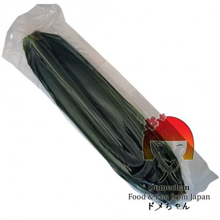 Foglie di bambù decorative L 32/34 cm - 100 foglie Domechan MJY-39865465 - www.domechan.com - Prodotti Alimentari Giapponesi